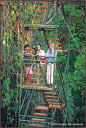 Observation Tower in Posada Amazonas - Tambopata